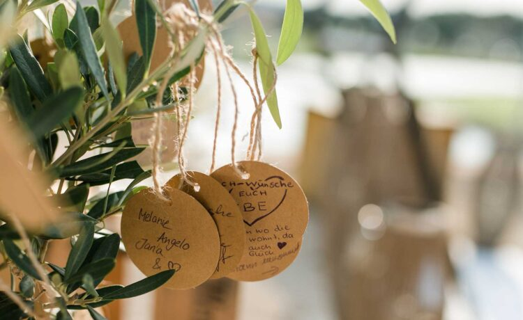 Planting a tree during the wedding: ritual for the wedding ceremony