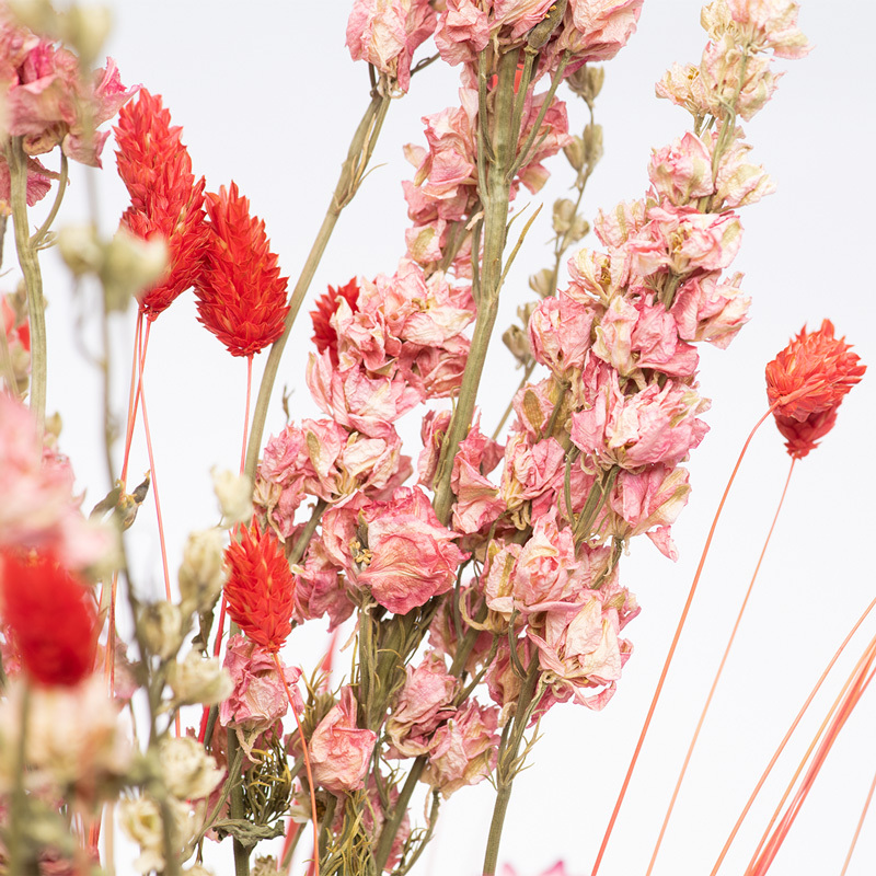 1632663902 948 Dried Flower Care Tips Bloomy Blog - Dried Flower Care Tips - Bloomy Blog