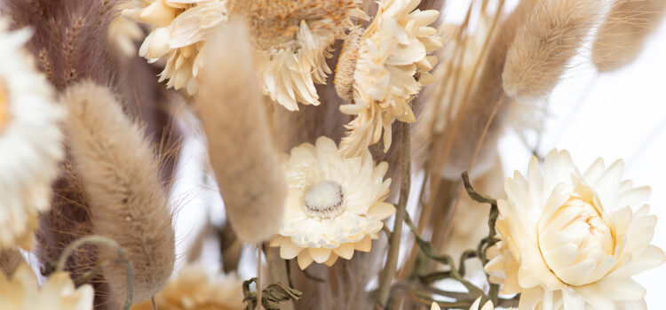 Dried Flower Care Tips - Bloomy Blog