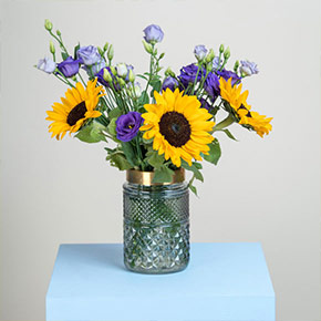 1632823923 384 Our new sunflowers Bloomy Blog - Our new sunflowers - Bloomy Blog