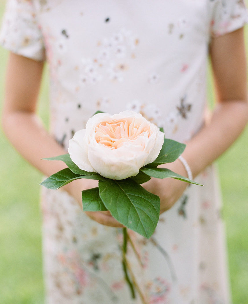 choose greenhouse wedding bouquets for your wedding 7 - Choose Greenhouse Wedding Bouquets for Your Wedding