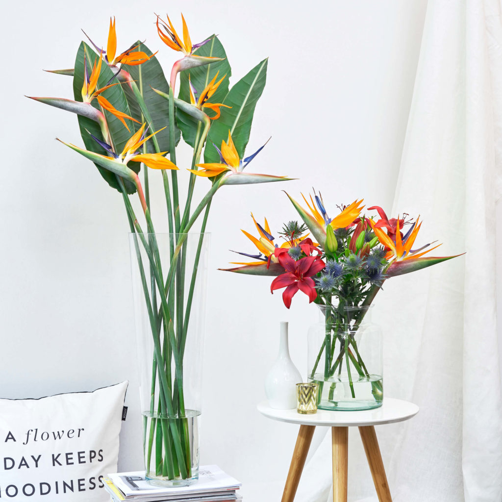 1633148448 746 Our flower subscription Bloomy Blog - Our flower subscription - Bloomy Blog